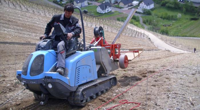 Unser Lohnunternehmer Stefan Eisel beim Pflanzen junger Spätburgunder-Reben, April 2011.